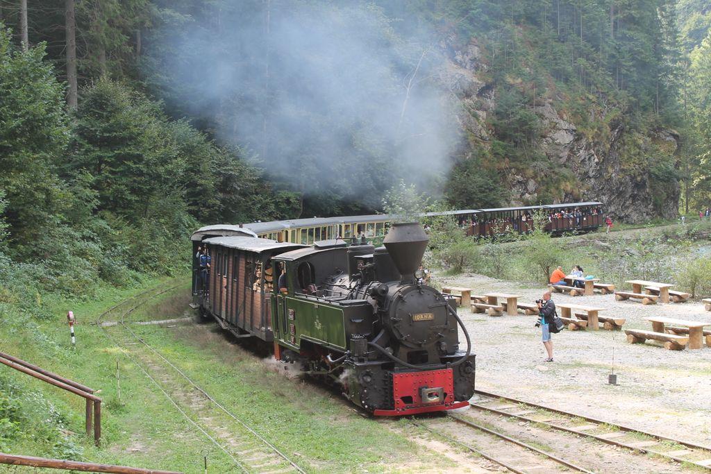 Train Valea Vaserului 4