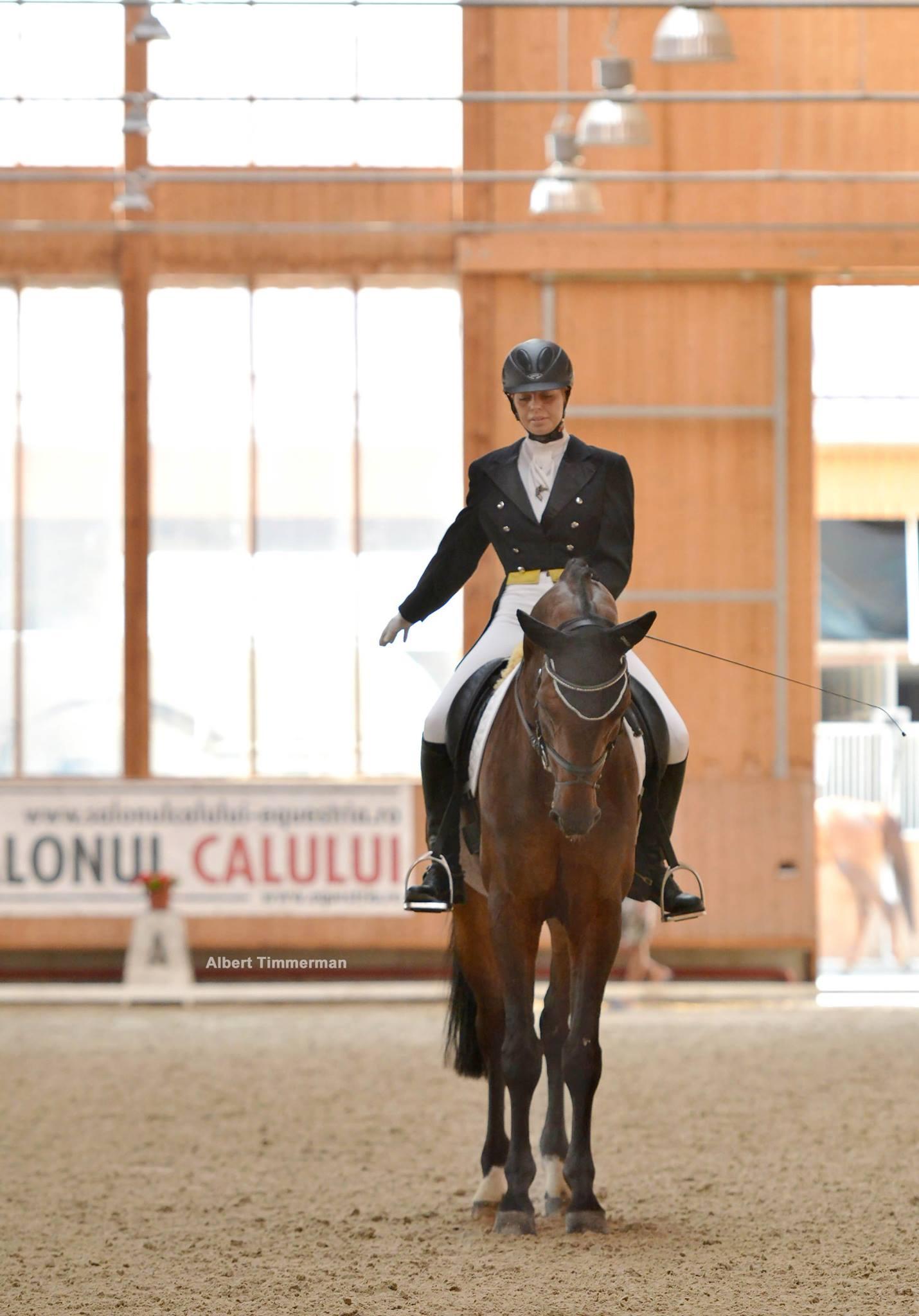 Ev. Clubul Equestria