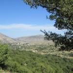 Creta 213
